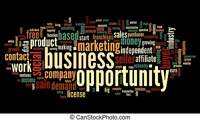 Business opportunity concept in word tag cloud on black...