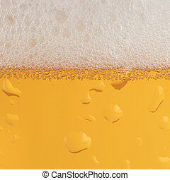 Beer with froth - Beer in a glass with condensation and...