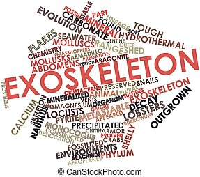 Exoskeleton - Abstract word cloud for Exoskeleton with...