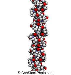 collagen model protein, chemical structure. - Chemical...