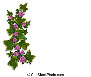Ivy Floral Border design - Illustration and image...