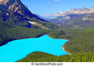 Peyto Lake Banff National Park - Magnificent blue waters of...