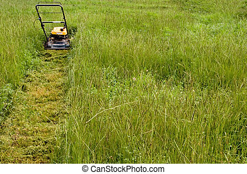 Mowing the Lawn - A lawnmower on the lawn in the afternoon.