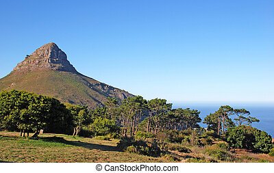"mountain ""Lion's Head"" (Capetown ,South Africa) - Summer..."