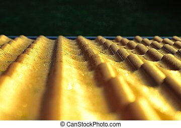 Sunset on bricks - The golden light of sunset reflected on...