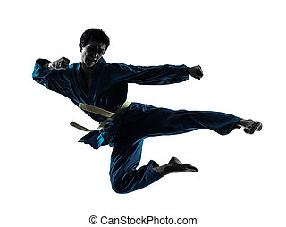 karate vietvodao martial arts man silhouette - one asian man...