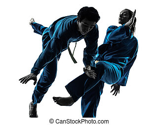 karate vietvodao martial arts man woman couple silhouette -...