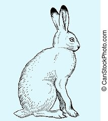 Hare on blue background