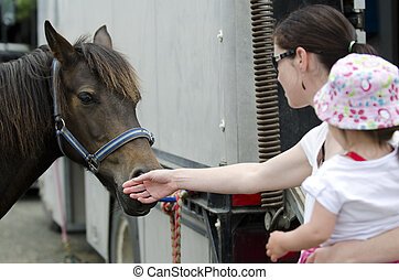 Rodeo - Young mother and her baby girl are petting a Rodeo...