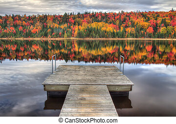 East coast Autumn - peak autumn colors in la mauricie...