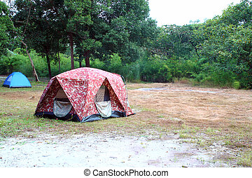 camping tent on the forest