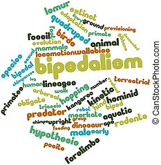 Bipedalism - Abstract word cloud for Bipedalism with related...
