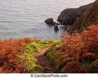 Howth Cliffs. Ireland. - Path across Cliffs near Howth town....