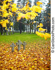 Three tombstone crosses - Three tombstone crosses and tree...