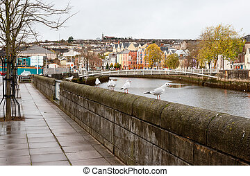 Cork City. Ireland - Lavitt's Quay on the north channel of...