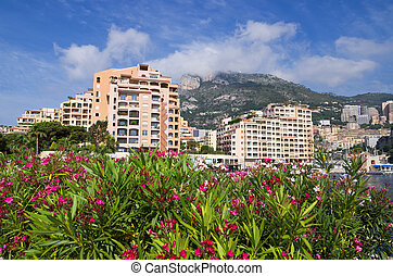 Fontvieille Monaco - Apartment houses in Fontvieille Harbour...