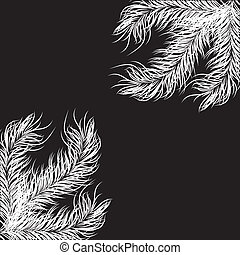 hite fir tree branch .Vector illustration - hite fir tree...