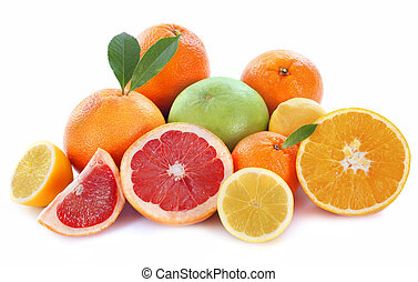 citrus fruits in front of white background