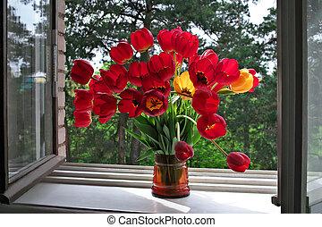 tulipanes, alféizar