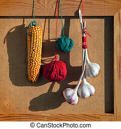 Still life with bunch of garlics, Indian corn and color balloons of yarn.