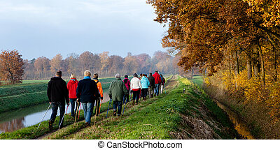 nordic walking - group of senior hikers doing outdoor sports...