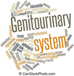 Word cloud for Genitourinary system - Abstract word cloud...