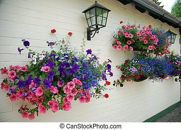 Hanging Baskets - Baskets of flowers in an English garden.