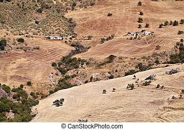 plowed fields in Andalucia - typical plowed fields in...