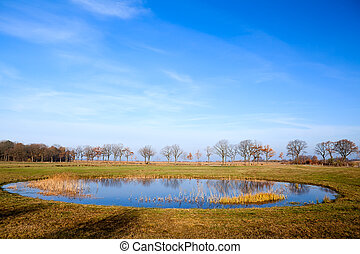 round shaped little pond - small round shaped pond reflects...