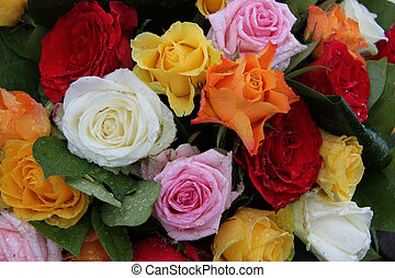 Multicolored roses with water drops in a mixed floral...