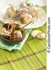 Escargots - Edible Burgundy escargots