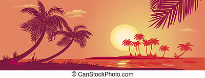 Sunset with palms at sea