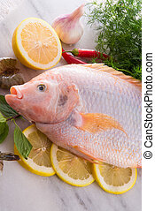 Freshness reddens the Nile Tilapia fish (Oreochromis...