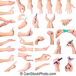 Set of woman hands isolated on white background - Set of...