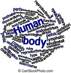 Human body - Abstract word cloud for Human body with related...