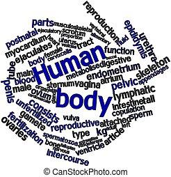 palavra, nuvem, human, corporal