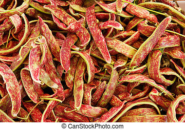 Cranberry Beans - Big pile of Cranberry Beans at the farmers...