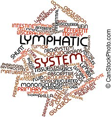 Lymphatic system - Abstract word cloud for Lymphatic system...