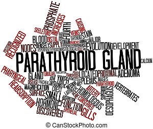 Parathyroid gland - Abstract word cloud for Parathyroid...