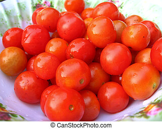 Background of red small ripe tomatoes - image of background...