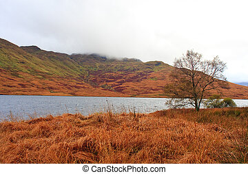 Highlands near Loch Katherine, Trossachs, Scotland