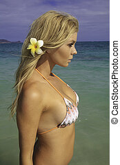 girl in bikini at a Hawaii beach - beautiful blond in bikini...