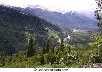 Glacier national park in Summer
