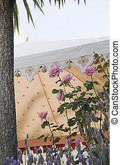 Garden party tent - Garden party with roses and outdoors...