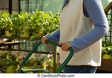 Lady Choosing Plants at Nursery, Pushing Trolley