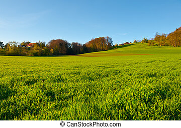 Pastoral - Green Pastures around Farm House in Switzerland