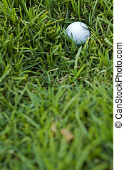 In the rough - Golf ball in long rough grass - a bad lie