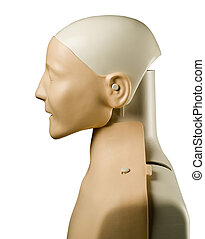 First aid medical mannequin dummy side view - First aid...