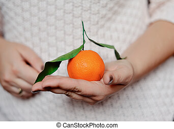 mandarin - close-up of woman's hands holding a ripe...