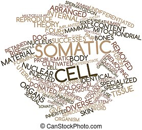 Word cloud for Somatic cell - Abstract word cloud for...